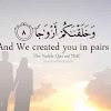 Mujeeb Umair