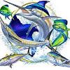 Cabo Fishing Pros