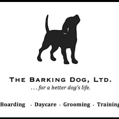 The Barking Dog Ltd