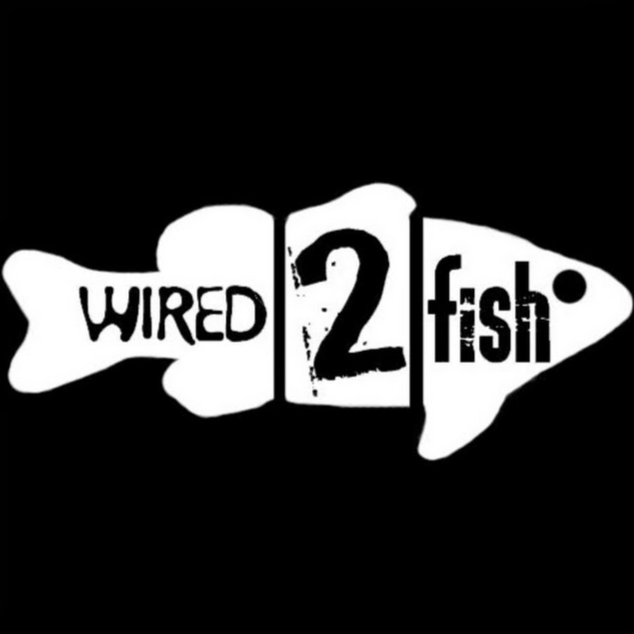 Wired2fish youtube for Wired 2 fish