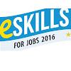 E-Skills Ametic