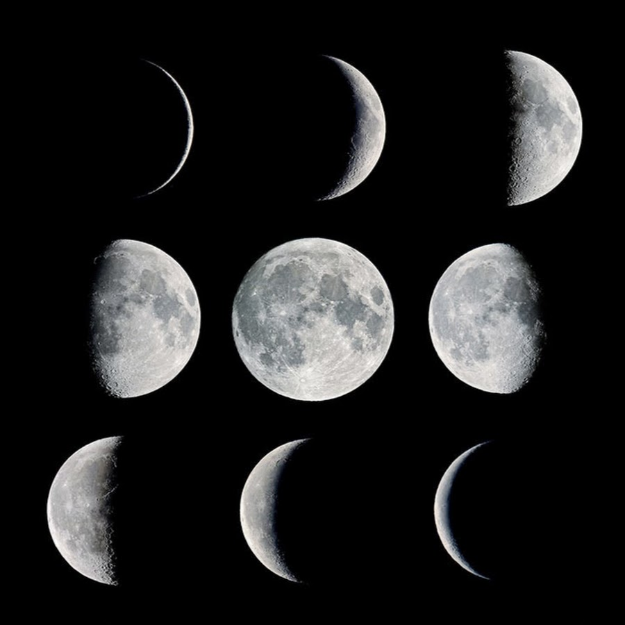 900 x 900 jpeg 60kB, Phases Of Mmoon | New Calendar Template Site