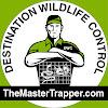 Destination Wildlife Control