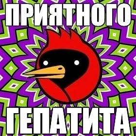 NataliHekima