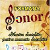 Formatia Sonor