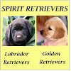 Spirit Retrievers