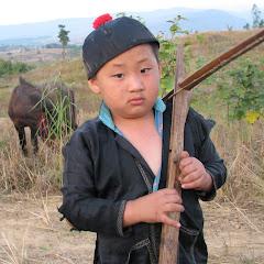 Da Xiong