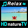 HDnatureTV: Relaxing Music Nature Videos Waves Relaxation 2 Study