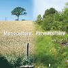 PermacultureMedia