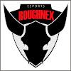 RoughNeXTV