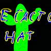TheCactusHat