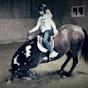 equestrianflair
