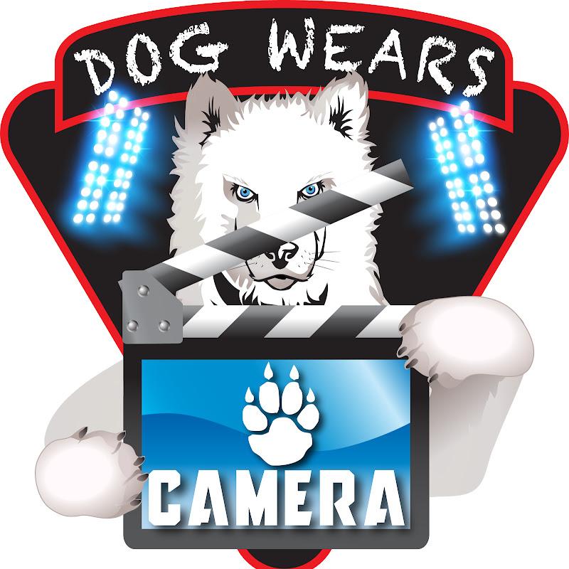 Dog Wears Camera