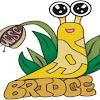 Bridge Santa Cruz