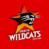 Wildcats TV