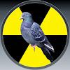 nuclearpidgeon