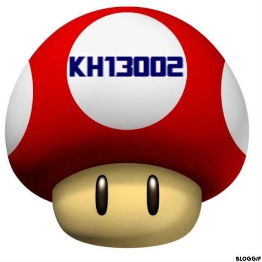 KH13002