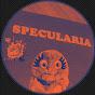 Specularia