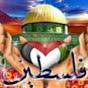rafat abuhadid