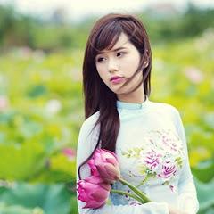 Nhạc Việt Hay Nhất