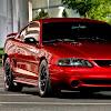 Mustang Aficionado