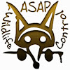 ASAP Wildlife Control And Removal
