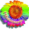 iliosporoi network