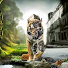 My Pet Tiger