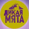 Дикая Мята — российский этнофестиваль