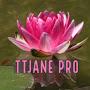 TTJane Pro
