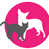 Wollongong Animal Rescue Network