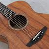 Mandolin629