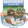 BridgetownTV