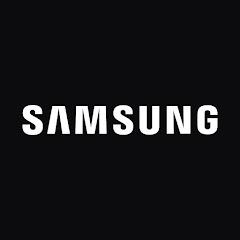 Samsung Electronics Argentina SA