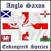 AngloSaxonMusic