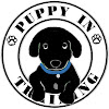 PuppyInTraining