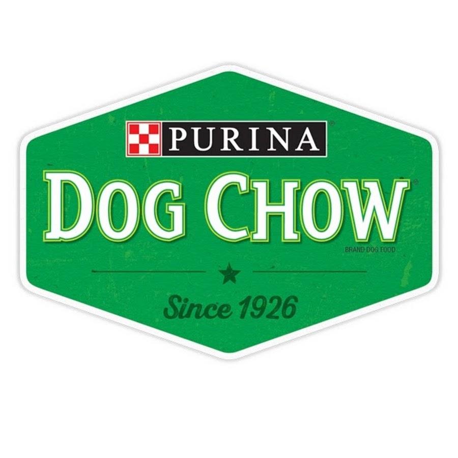 Dog Training Youtube Channels