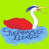SwimmingBird941
