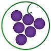 WTSO.com (Wines 'Til Sold Out)