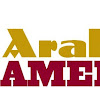Arab America