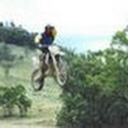 royboy302