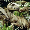 tinyraptor