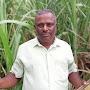 Samayadurai R