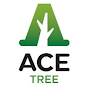 Ace Tree Management