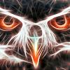 falcon2081