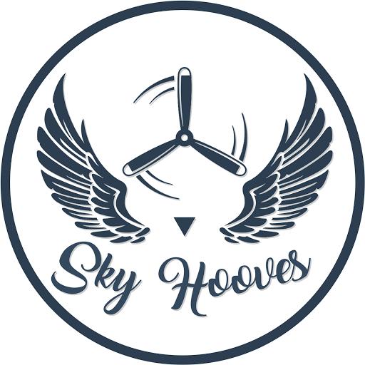 Sky Hooves