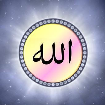 musulmanedefrance