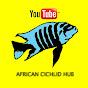 African Cichlid Hub