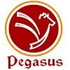 Pegasus Consultancy
