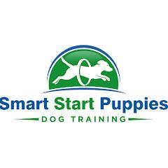 Smart Start Puppies